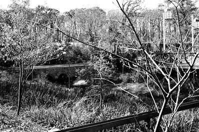Nikon F3 Black and White Film-December 08, 2009-034