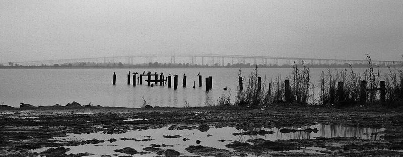 Nikon F3 Black and White Film-December 11, 2009-006-2