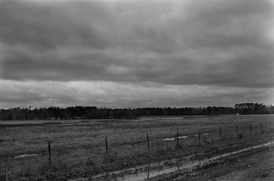 Nikon F3 Black and White Film-December 08, 2009-017