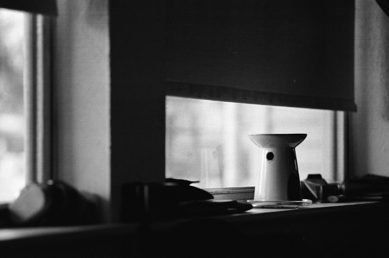 Nikon F3 Black and White Film-December 28, 2012-007