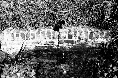 Nikon F3 Black and White Film-December 08, 2009-024