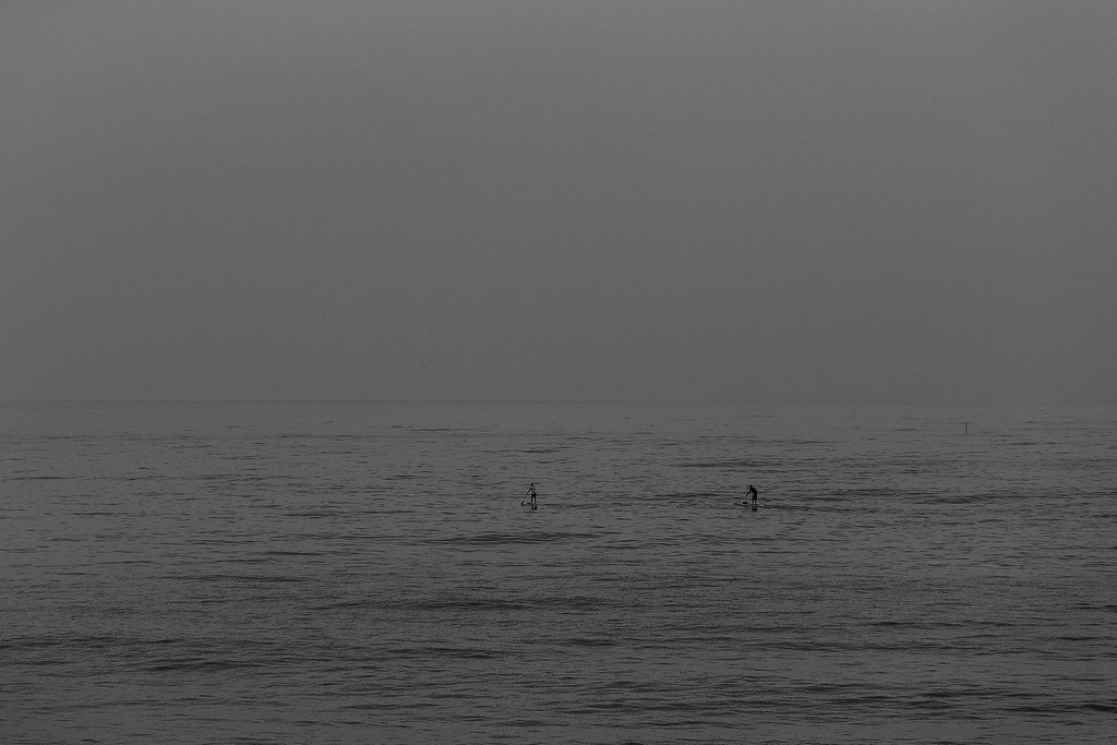 Paddle Board Dawn, Redondo
