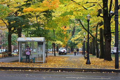 The South Park Blocks in the fall.