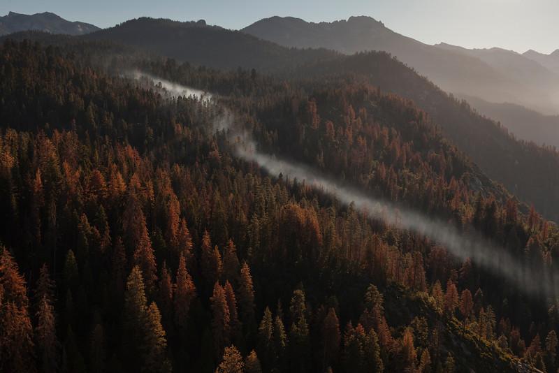 Mist River, Sequoia National Park