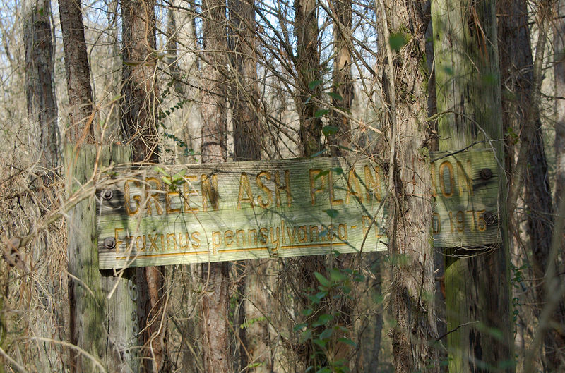 sign from the Green Ash Plantation that used to be in this area.