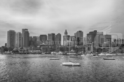 Boston Skyline - black and white