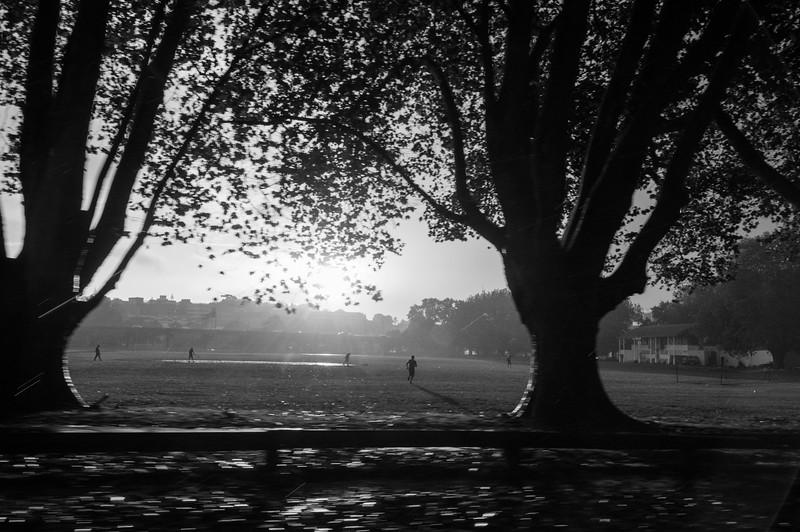 Victoria Park, Auckland, 2014.