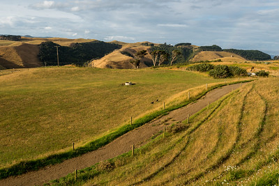 Manukau Heads / Awhitu Peninsula, January 2018