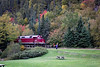 Agawa Canyon Train among the trees