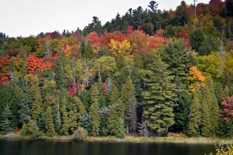 Elliot Lake 2