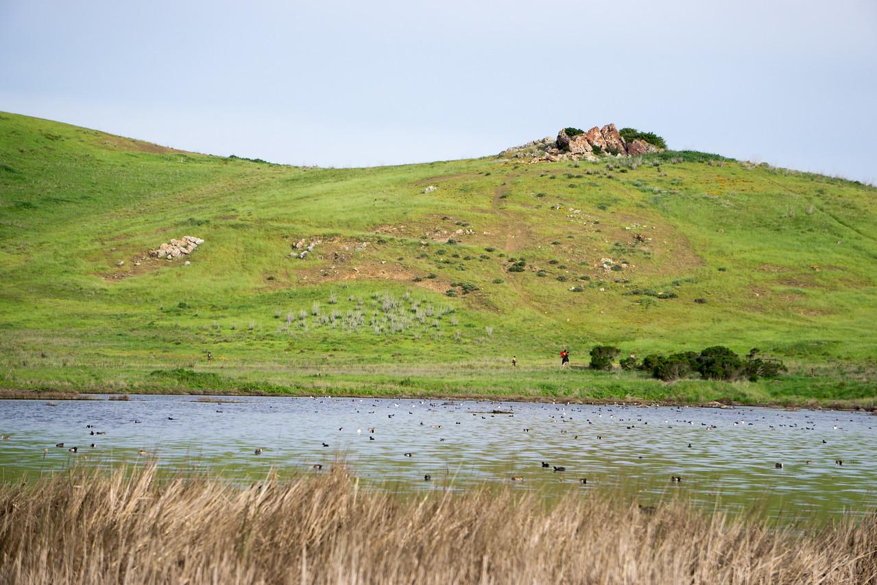 23 Coyote Hills