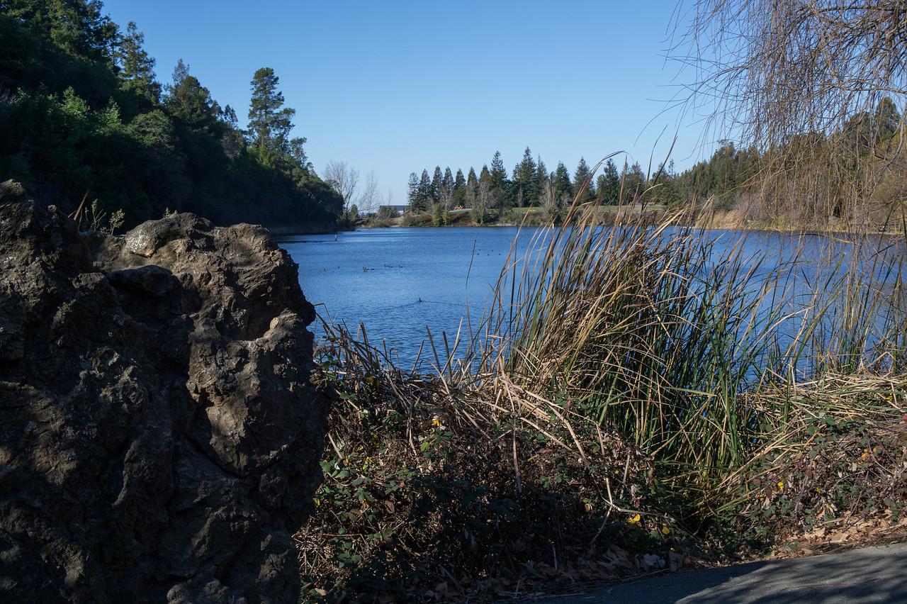 3555 Lake Temescal
