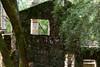 2350 Jack London HIstoric Park