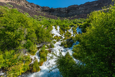 Spring water gushes from hillside.  Niagara springs, Idaho.