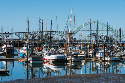 Embarcadero Marina with Yaquina bay bridge in background