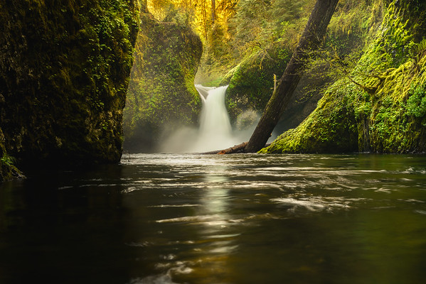 Oregon is Gorges