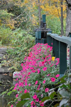 Maine trip October 2013