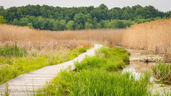 Wake Robin Trail