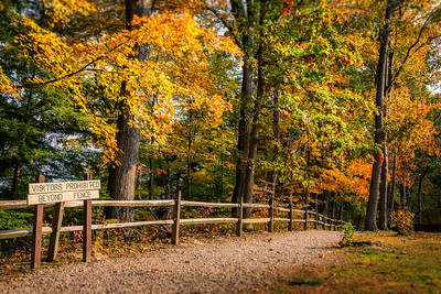 Photographed in the Mohican State Park near Loudonville, Ohio on October 18, 2016. Photo by Joe Frazee.