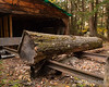 Another log ready for processing.  Old pieces of railroad track were used to bring the logs into the mill on
