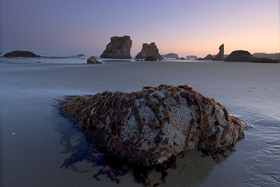 Bandon, Oregon  More shots from the early morning. I like shooting with the 12mm to capture a foreground image as well as objects in the background.  I used a 2 stop hard graduated neutral density filter to balance the light in the background and foreground.