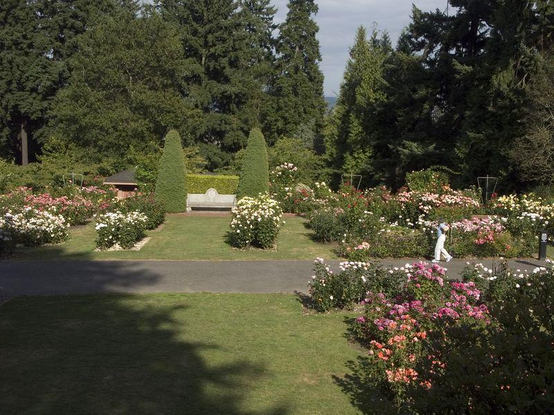 022Test Rose Garden