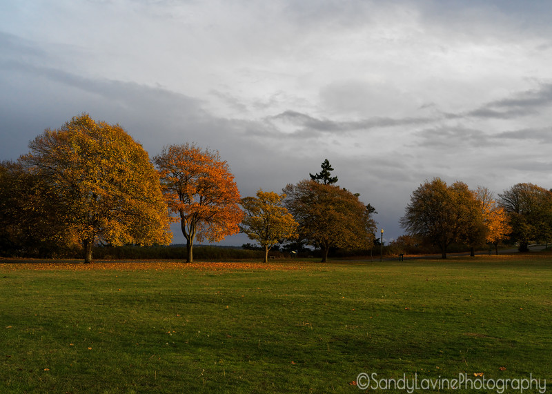 Port Townsend Park