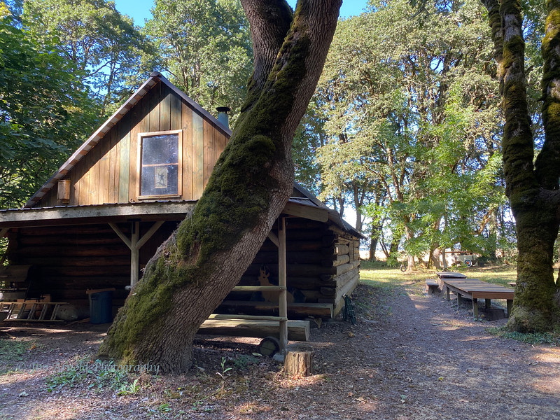 Cabin in the Woods - Sherwood Forest