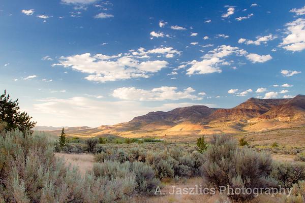 Featured Landscapes