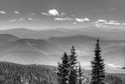 Mount Jefferson from Timberline