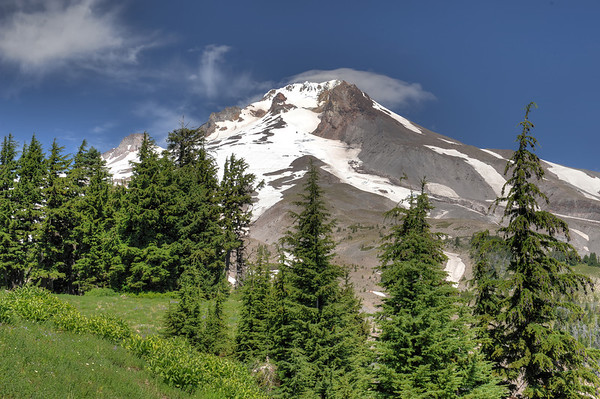 Mount Hood at Timberline