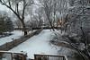 snow IMG_5164