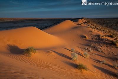 IMG_3651_Simpson Desert - QLD