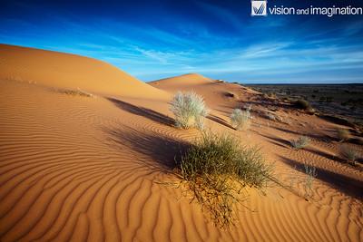 IMG_3691_Simpson Desert - QLD