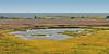 Pea Island National Wildlife Refuge - Rodanthe, NC - 2013