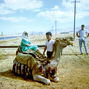 Aileen getting a camel ride in Lebanon.