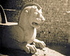 Caged lion sculpture at Persepolis. I shot this with my brownie camera in 1967 and then lost the prints and negatives for forty years.