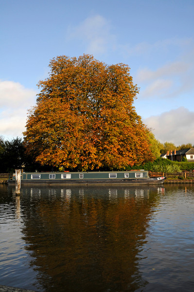 Autumn Trees and Barge River Thames near Oxford