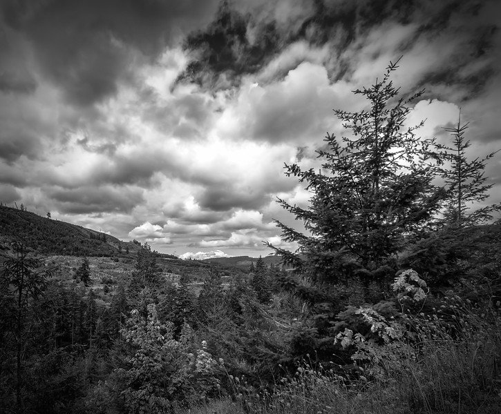 viewpoint, Abiqua Falls trail