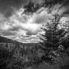 viewpoint, Abiqua Falls trail