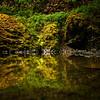 reflections of Abiqua Falls