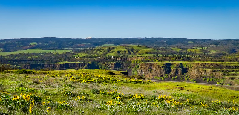 From Rowena Crest, Columbia River Gorge
