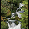 """Just one of what seemed like dozens of small road-side waterfalls.<br><span class=""""subcaption"""">&nbsp; Thanks to image-stabilized lens, I was able to hand-hold this 1/4-second shot to still get some water blur effect.</span>"""