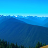 Hurricane Ridge visitors' area
