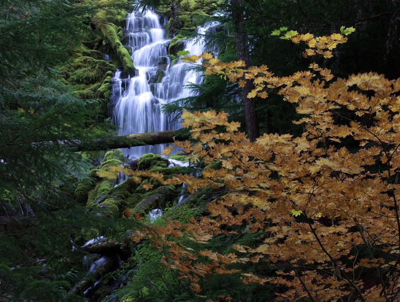 Proxy Falls in autumn.