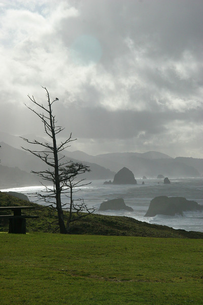 View from Ecola Park, Oregon coast.
