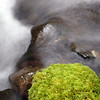 "Water and moss.<br><br><span class=""subcaption"">  One of my first attempts at getting the blurred water effect via deliberately long exposure times. Here was 1.3-seconds.</span>"