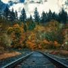 Hillsboro Fall