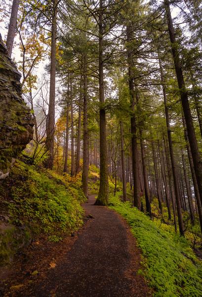 path to Wahkeena Falls