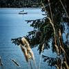 Hwy 101, past Brinnon, overlooking Dabob Bay.